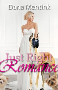Just Right Romance by Dana Mentink